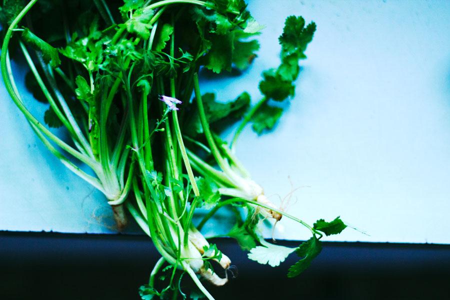 Green Food, Reviving Food, Natural Cleanse, Green Juice, Enjoyable, Natural Cleanse, Gentle Cleanse, aldentegourmet blog