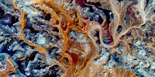 orange algae,Stone plant fantasy,Abstract Naturalism,abstract photography deserts of Africa from the air,abstract surrealism,mirage in desert,fantasy forms and colors in the desert,plants,leaves,