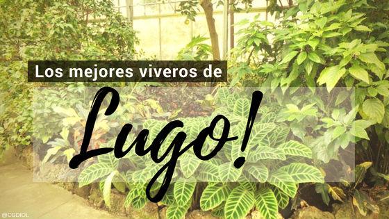Listado de los Mejores Viveros de la Provincia de Lugo, España, donde puedes comprar plantas para tus proyectos