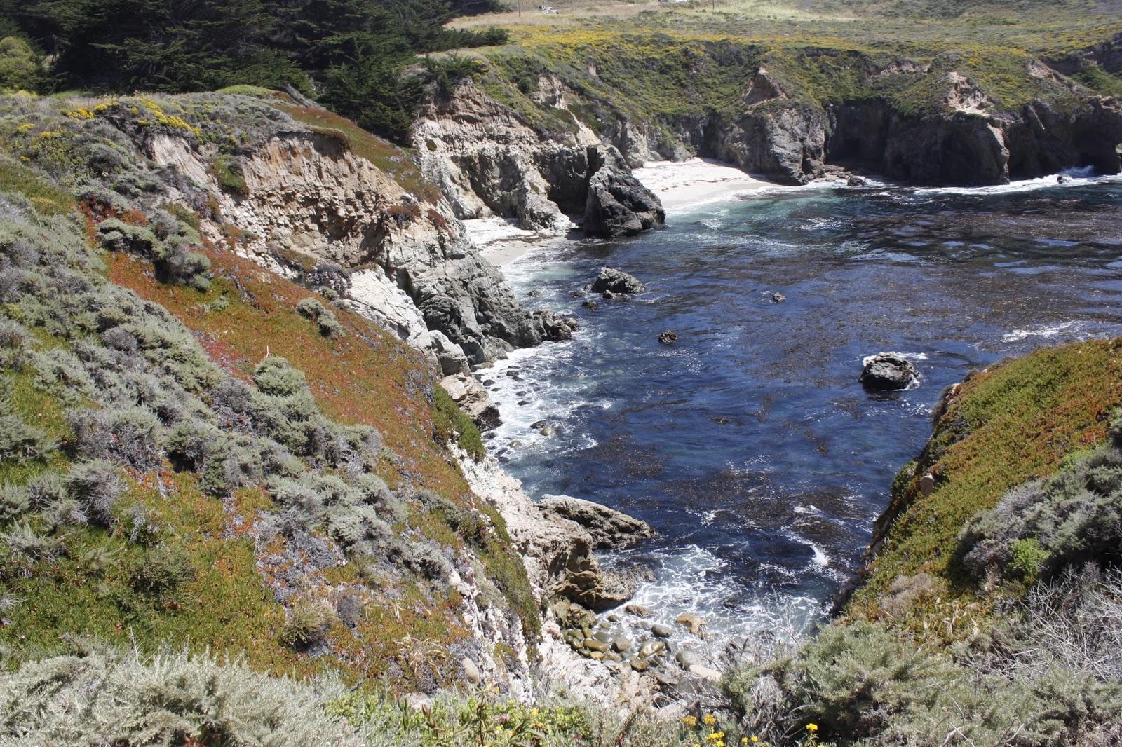 Dc scorpio blog ca sea otter state game refuge carmel ca for The refuge carmel