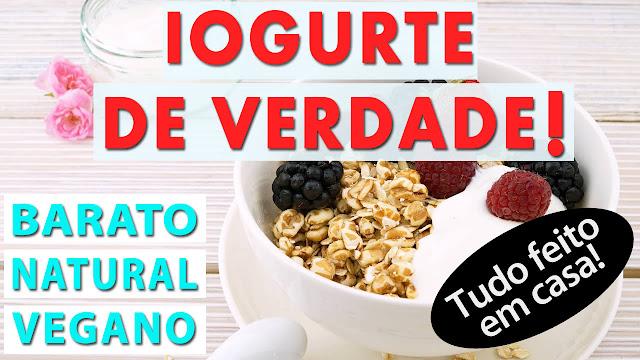 Receita de iogurte vegano super acessível | Sem iogurteira e com probiótico caseiro | Medicinal e com lactobacilos