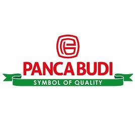 Logo PT Panca Buana Plasindo