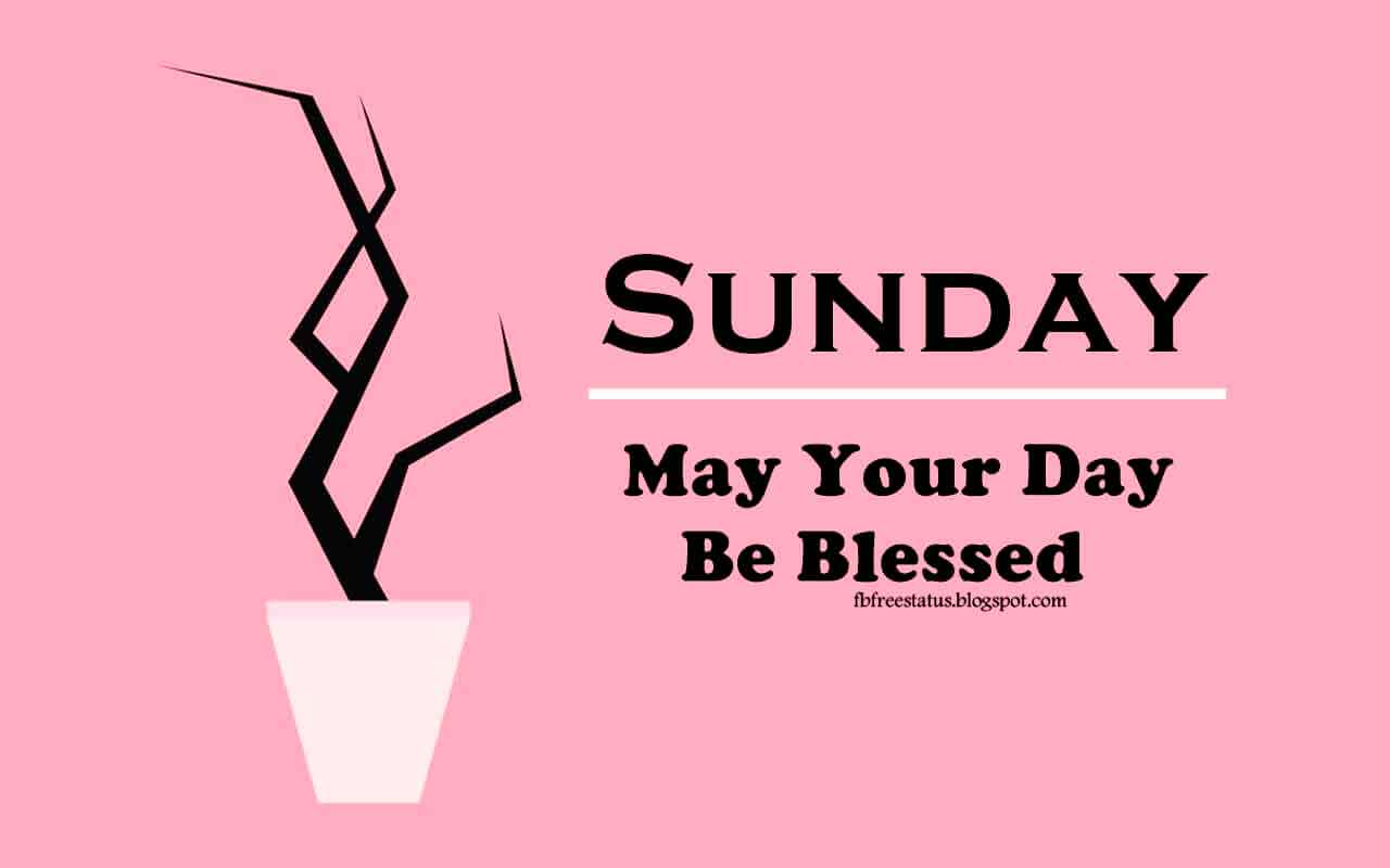 Sunday, may your day be blessed.