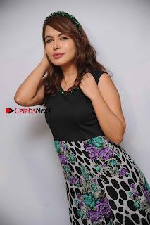 Kannada Actress Ranusha Stills at Sarvasva Press Meet  0006.jpg
