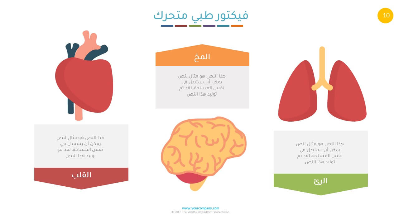 عرض بوربوينت طبي الكبد والمخ