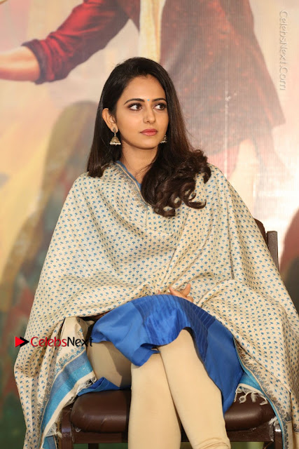 Actress Rakul Preet Singh Stills in Blue Salwar Kameez at Rarandi Veduka Chudam Press Meet  0032.JPG