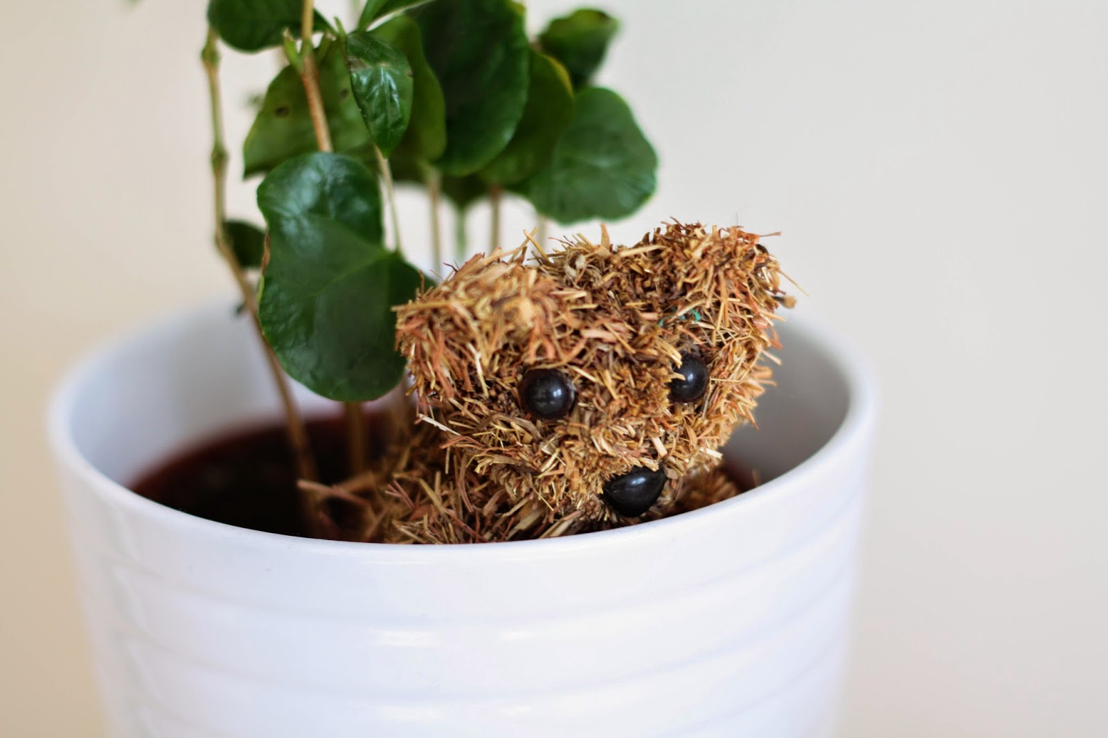Straw teddy bear in a plant pot