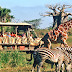 Benefits of having a private safari tour in Africa