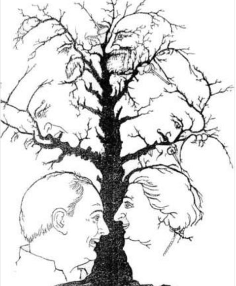 Puzzle: How many faces can you see in the tree?