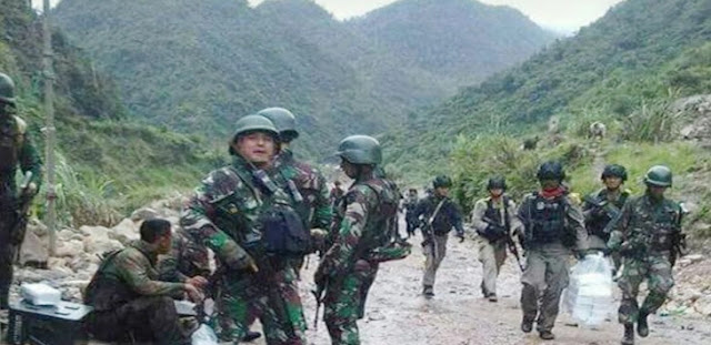 Hadapi Separatis Papua Pakai Senjata Kimia, TNI: Itu Hoax