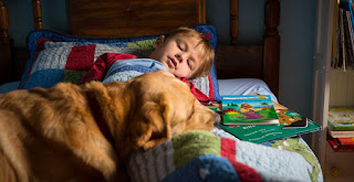 Dogs Benefit The Health Of Your Child And You