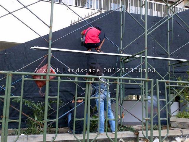 Tukang Taman Vertikal Garden Di Sidoarjo