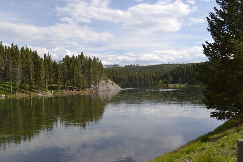 Yellowstone, Wyoming, usa, parc