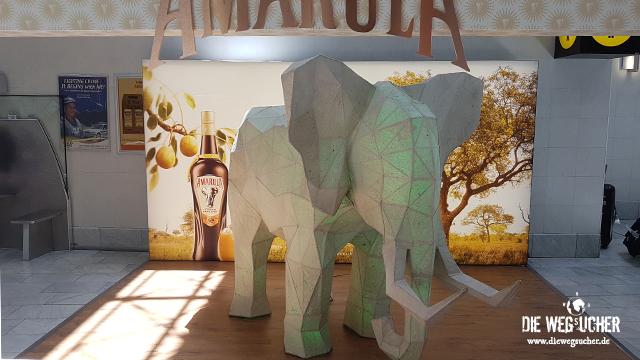 Amarula Liquer Liqör aus Afrika Südafrika Kapstadt