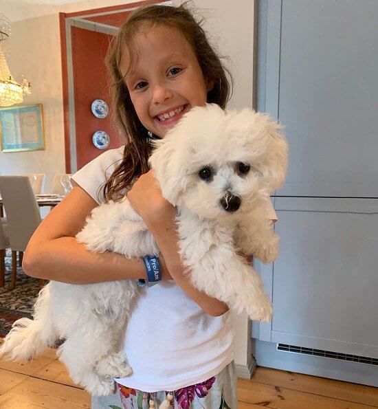 Princess Athena, Princess Marie, Prince Henrik and Prince Joachim have got a new pet dog called Cerise, Bichon Frise