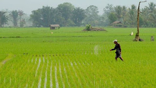 Tujuan Pembangunan Nasional Indonesia