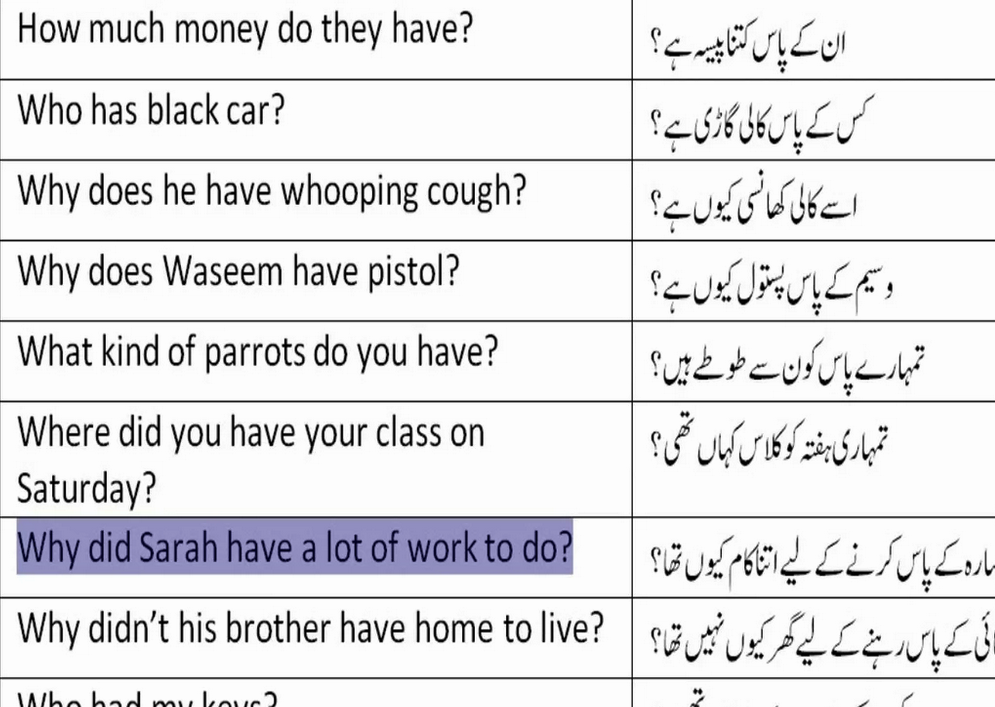Lesson 42 Most Common WH Questions In Urdu