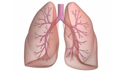 8 Tanda dan Gejala kanker Paru-paru yang Umum yang Perlu Anda ketahui