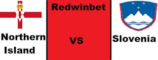 redwinbet.com
