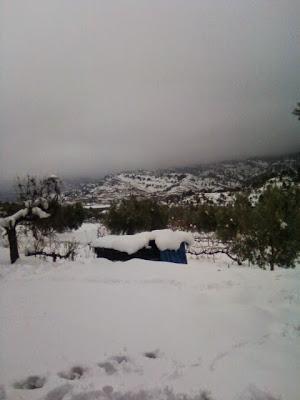 clima, Beceite, nieve, frío, nevada, está nevando, Beseit, neu, olivares,finca