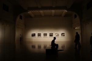 Galerie próżności.