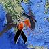 Το σχέδιο υποδούλωσης της Ελλάδας 2010-2018: Τα ΞΕΠΟΥΛΗΣΑΝ ΟΛΑ!!!-Δείτε σε ένα συγκλονιστικό βίντεο τί ΕΡΧΕΤΑΙ μέχρι το 2115!!!