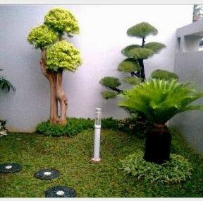 Tips merawat taman rumah
