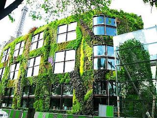 Vertical Garden - Building Facade