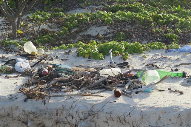 Marine debris on the shores of an isolated tropical atoll in the Indian Ocean