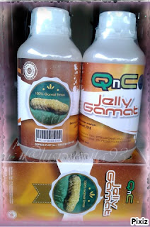 QnC Jelly Gamat