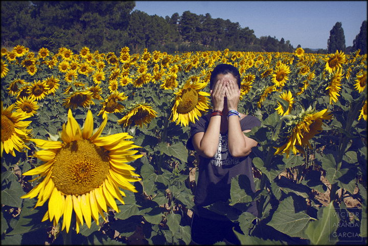 fotografia,girasol,naturaleza,retrato,cuenca,eclipse,melancolía