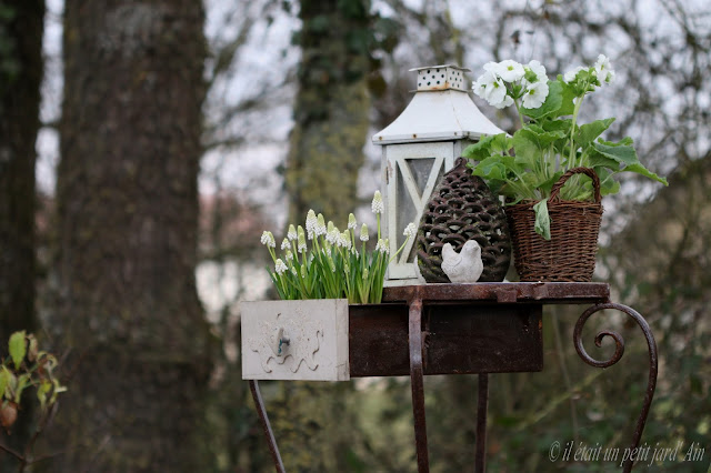 décoration jardin fer