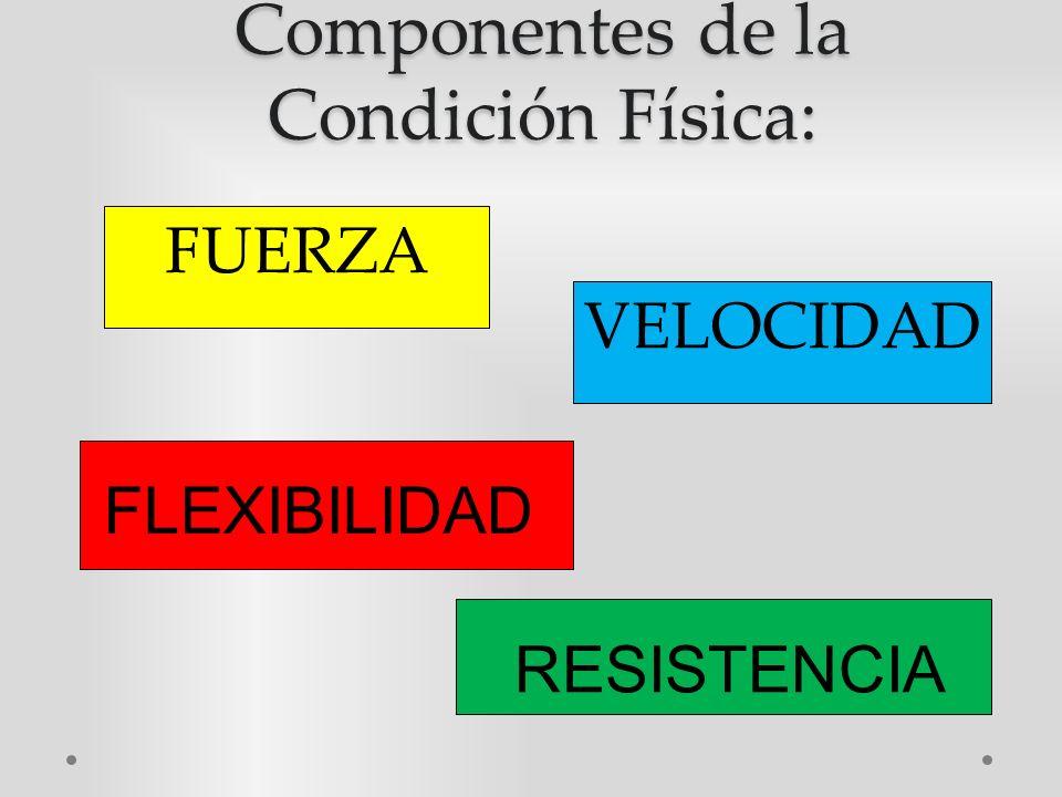 Sus que y componentes condicion es fisica la
