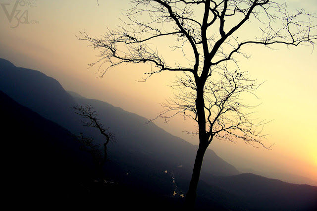 Sunset at Jeenukallu Gudda, Yellapur