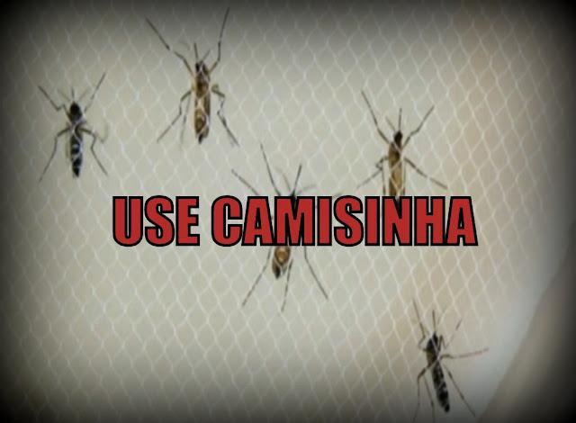 Confirmação de transmissão sexual do vírus Zika zika virus aumenta ainda mais alerta mundial
