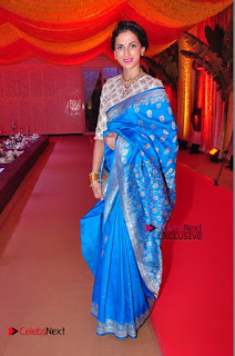 Actress Model Shilpa Reddy Exclusive Stills in Blue Saree at Vijay Karan Aashna Wedding  0054.JPG