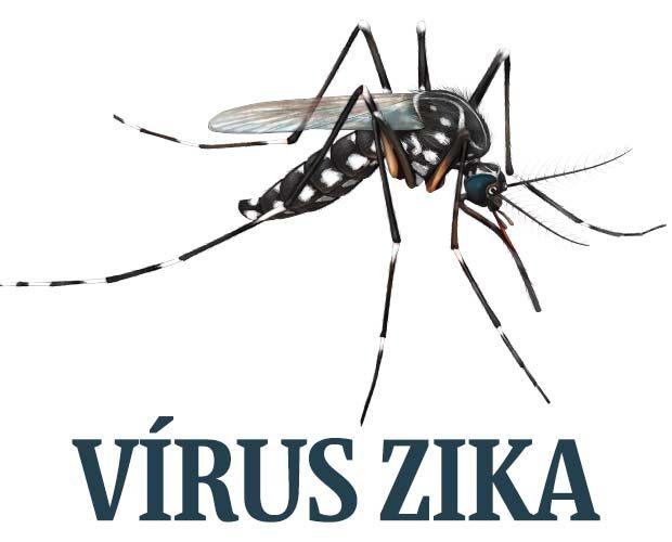 Pernambuco tem 13 casos confirmados de zika nos três primeiros meses de 2018