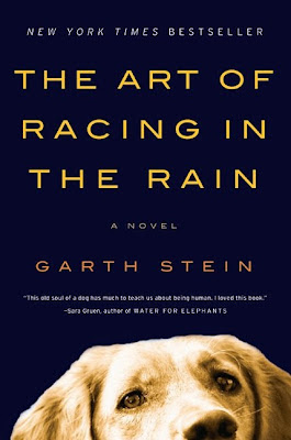 The Art of Racing in the Rain by Garth Stein - book cover