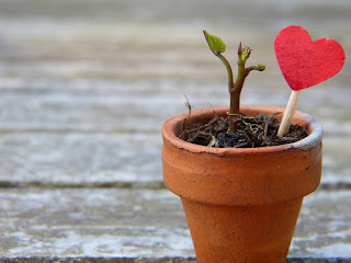 Menyapih dengan Cinta