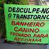 Em criatividade, o brasileiro se supera