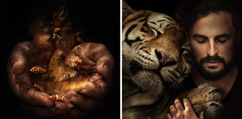 00-Marcel-van-Luit-Digital-Art-Animals-Photos-www-designstack-co