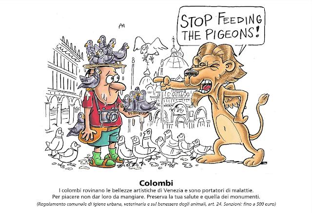 Aby se vám to nestalo v Benátkách taky, záka krmení holubů