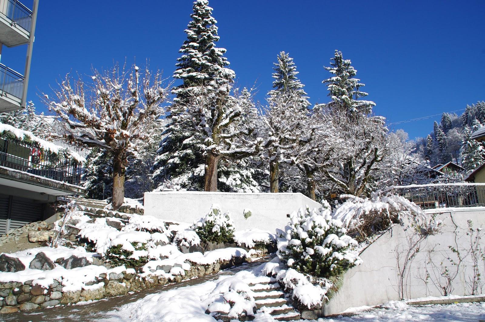 Switzerland Snow Grindelwald