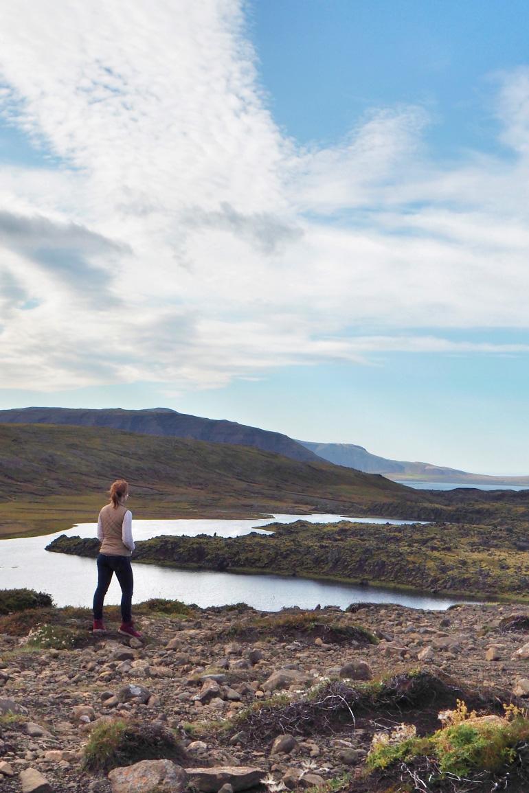 Panorama en Islande