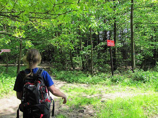 Wchodzimy w obszar Świętokrzyskiego Parku Narodowego.
