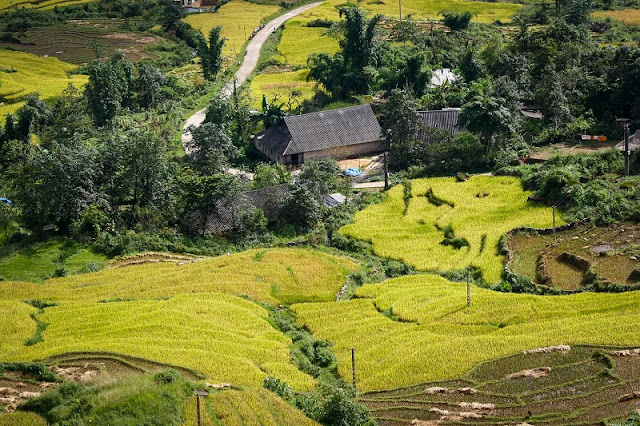 Typical Types of Tourism in Sapa 6