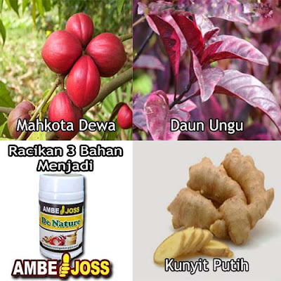 Obat Wasir Herbal Alami Dari Tumbuhan