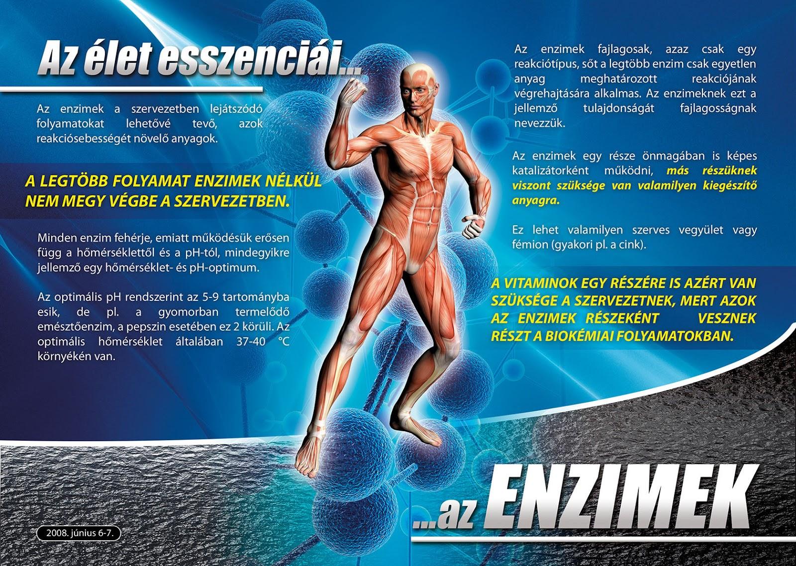 fogyás enzimek a rágódohány segíti-e a fogyást