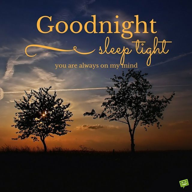 Good Night Sweetie I Love You Quotes