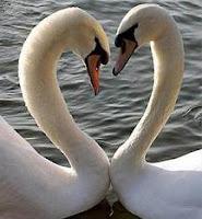 Relaciones de pareja estables y satisfactorias